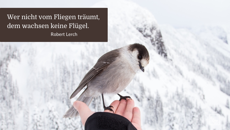 fliegen-lerch
