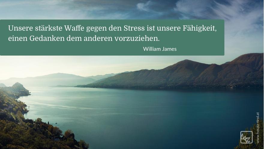 stress-james Kopie